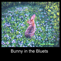 impressionist painting of cottontail rabbit (SOLD)
