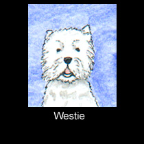 miniature watercolor painting of west highland terrier dog