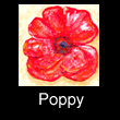 acrylic abstract painting of poppy (SOLD)