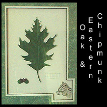 leather sculpture of oak leaf and chipmunk drawing
