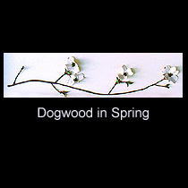 leather sculpture of dogwood branch