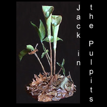 leather sculpture of jack in the pulpit flowers